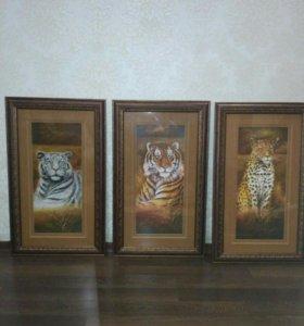 Продается набор картин.