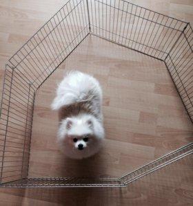 Вольер для щенка
