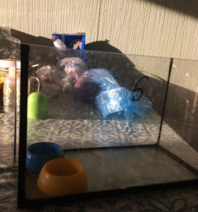 Небольшой аквариум для грызунов