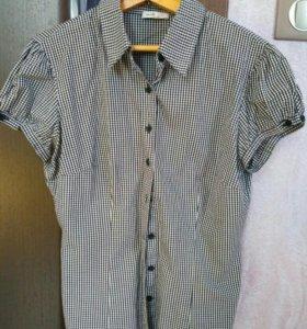 Рубашка х/б оджи