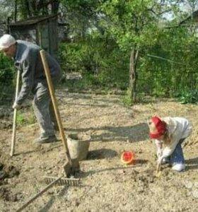 Вскопка огородов,уборка помещений