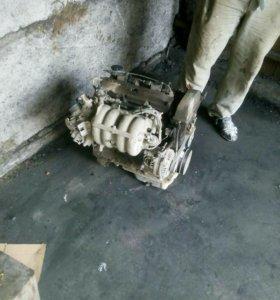 Двигатель мазда примаси