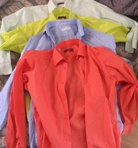 Рубашки мужские 1000 за все
