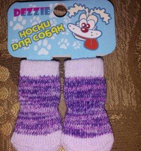 Носки для собак