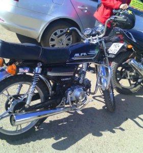 Alfa 72 cc