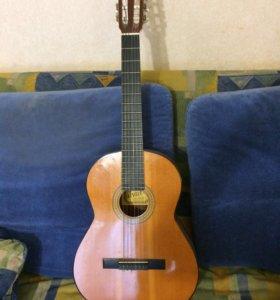 Концертная гитара