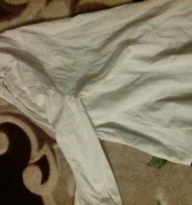 Блузка zolla белая,классическая
