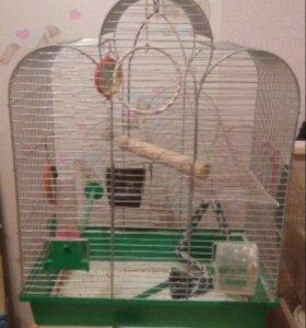 Клетка для птиц, большая.
