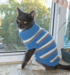 Тёплый свитер для кошки/собаки