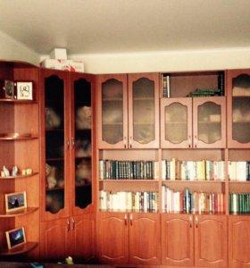 Библиотека-стенка