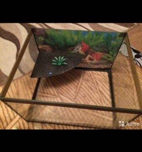 Аквариум для красноухих черепах.