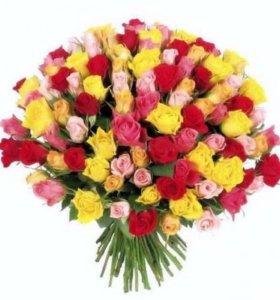 роза кения 35-40  см