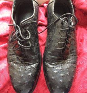 Туфли из страуса