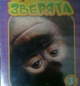Позновательное о Орангутанге отто