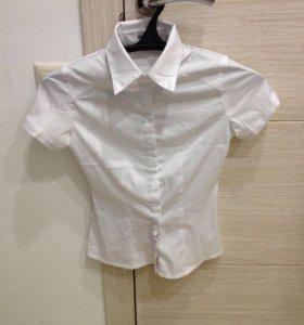 Рубашка (42) XS