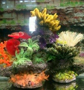 Композиция из кораллов для аквариума