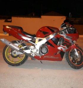 Honda CBR900-919