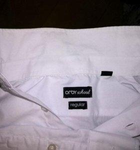 Школьная рубашка р.134-64-31 Orby Schol