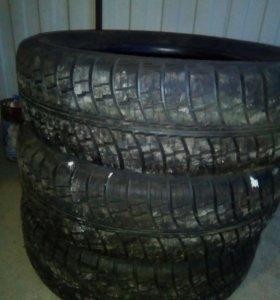 Новые шины КАМА