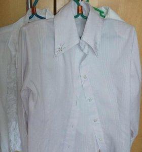 Блузки школьные белые 1-3 класс