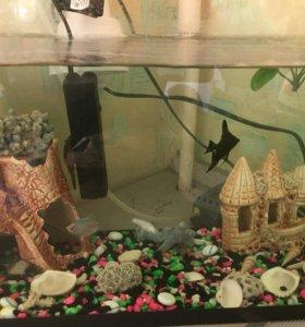 Аквариум,рыбки, декорации