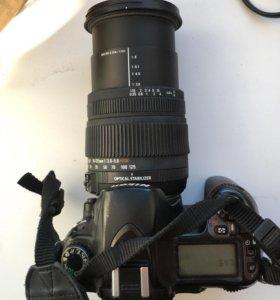 Nikon d80 + Sigma AF 18-125mm f/3.8-5.6