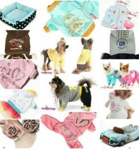 Товарные остатки, одежда для собак