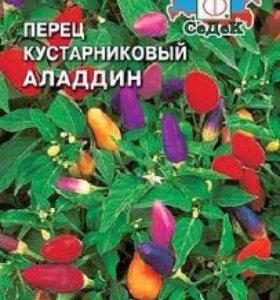 Перец декоративный алладин