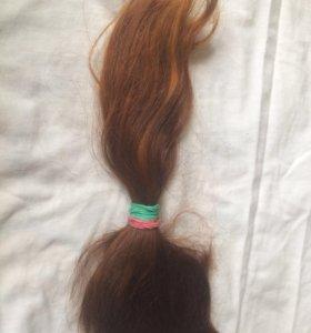 Срез натуральных волос