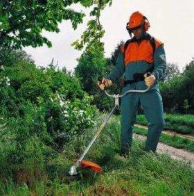 Выкошу траву возле дома, на садовом участке.