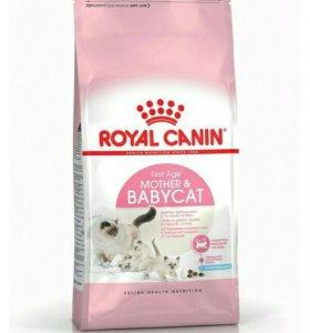 Royal Canin для котят в возрасте с 1 до 4 месяцев