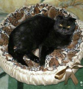 Лежанки для кошек и собачек