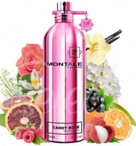 Candy rose montale