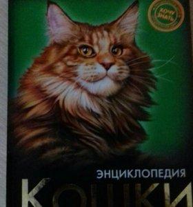 Энциклопедия :Кошки