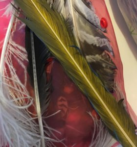 Творчество: краски, нити, перья редких птиц, кисти