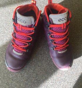 Ботинки Ecco biom