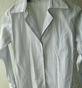 Рубашка жен. 42р