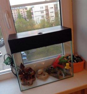 Продаю аквариум и все для декора