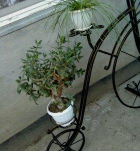 Велосипед для альпийских горок.