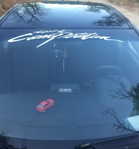 Виниловые наклейки и надписи на авто (ваш эскиз)