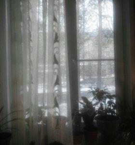 Пластиковые окна 2 окна.