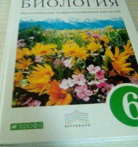 Учебник по Биологии 6 класса В.В.Пасечник
