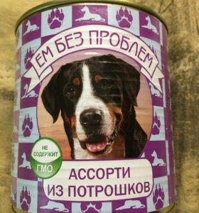 Корм для собак