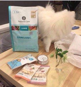 Корейский корм для кошек и собак