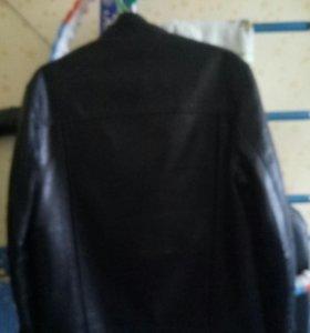Куртка бобер