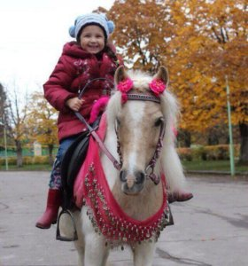 Прогулка на пони