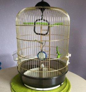 Клетка для попугая, птиц