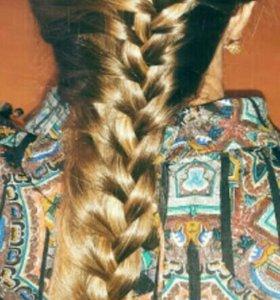 Плету косы недорого