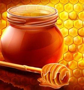 Мед подсолн.