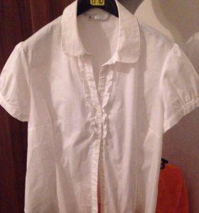 Блуза 52 54 50